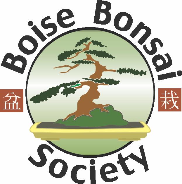 Remarkable Bbs Boise Bonsai Society Boise Idaho Wiring Cloud Oideiuggs Outletorg
